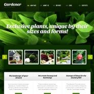 Implementazione-siti-web-giardini-39696-wp-b