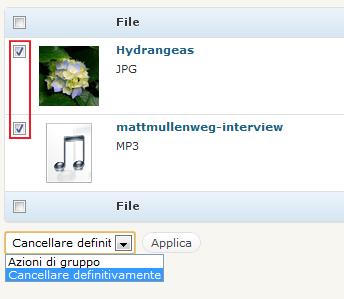 guida-wordpress-cancellazione-file-di-massa