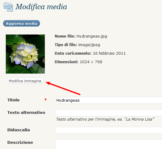 guida-wordpress-modifica-media