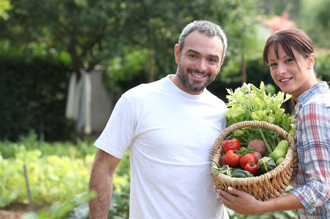 Siti web per aziende agricole Green