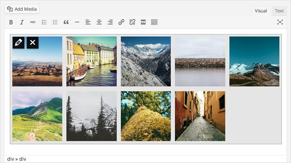 gallerie immagini wordpress
