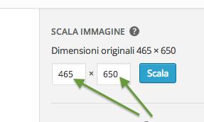 scalare-immagine-wordpress
