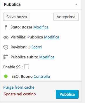 pubblicare-pagina-wordpress-amministratore