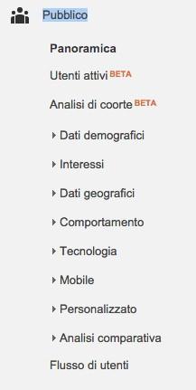 pubblico-google-analytics
