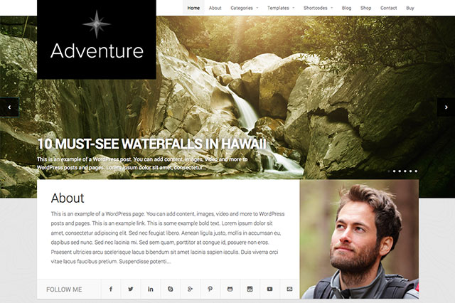 Temi-Wordpress-adventure