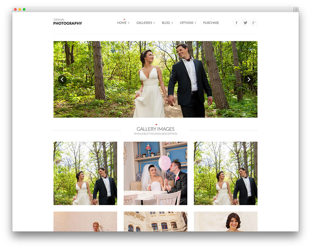 tripod--Template-Wordpress-Wedding-Planner