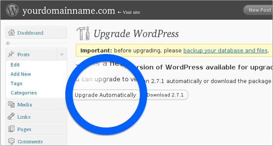 aggiornare wordpress automaticamente