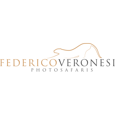 ImageSafaris-logo