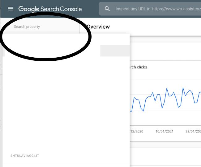 search console Google dettaglio
